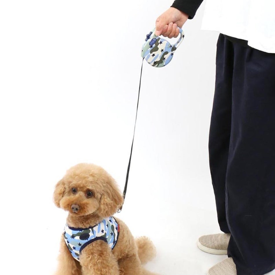 Collars, Harnesses & Leashes